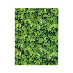 Image 4 - Muursticker 1/10 Meter Groene Weide Effect zelfklevende Muur Sticker Muurstickers Home Decoratie Living Slaapkamer Decor