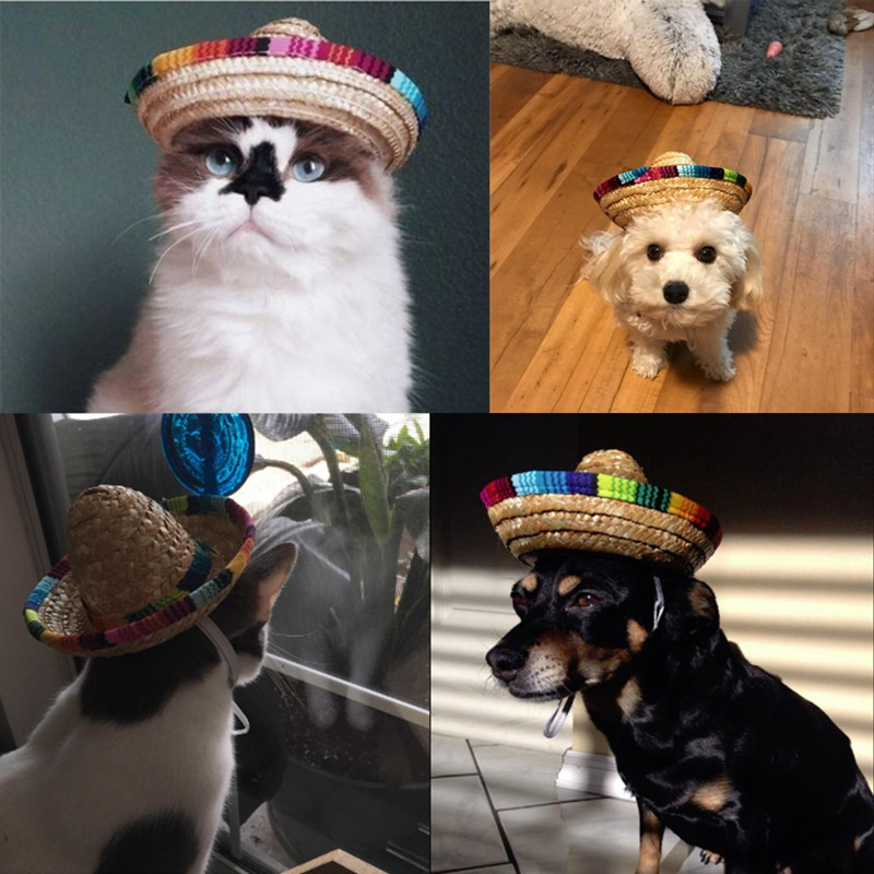 US $1 76 30% OFF|Multicolor Pet Straw Hat Dog Cat Mexican Straw Sombrero  Hat Pet Adjustable Buckle Costume Dogs and Cats Funny Accessories-in Dog  Caps