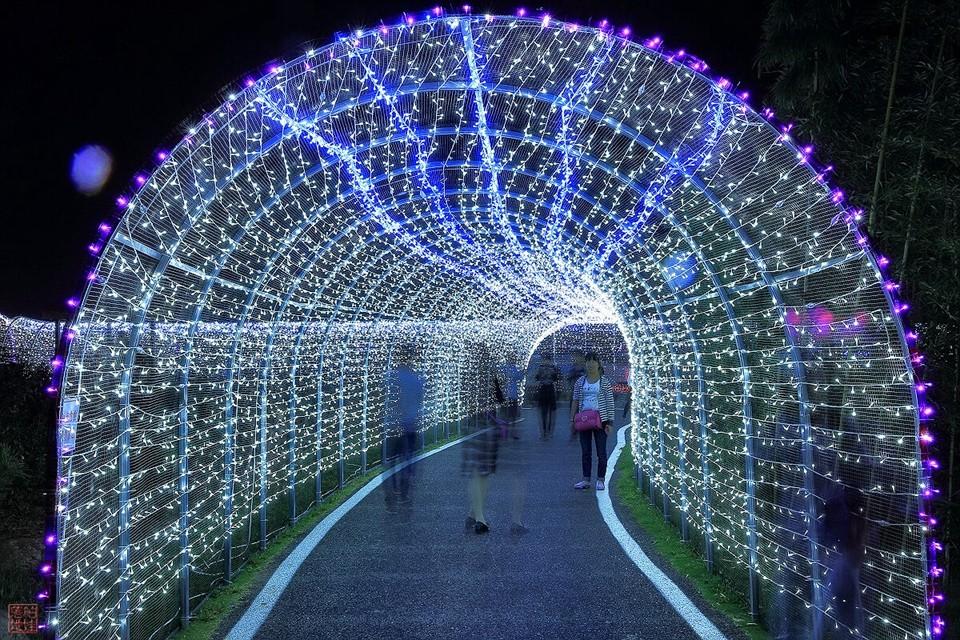 Lighting Strings wedding christmas lights led strings 10m AC220V 110V Led Strip Light Garden Garland  (4)
