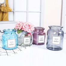 Modern Creative Glass Vase Ornaments Home Furnishing Crafts Office Table Bouquets Flower Pot Wedding Decoration