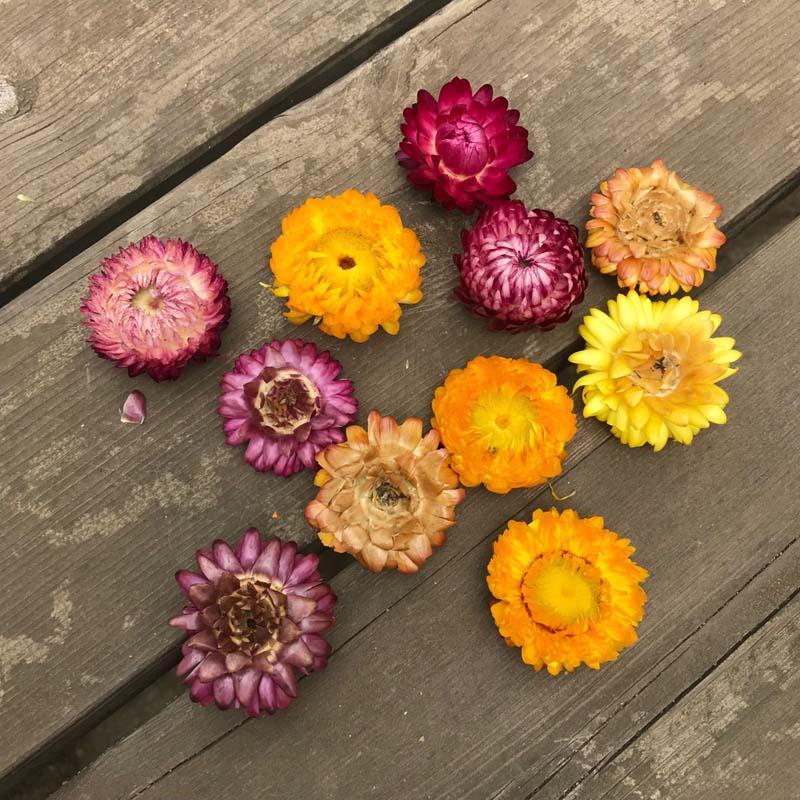 1-5 см/50 шт. сухие соломинки, головки хризантемы, декоративные сухие ромашки из натурального подсолнуха, украшение «сделай сам» для дома, свад...