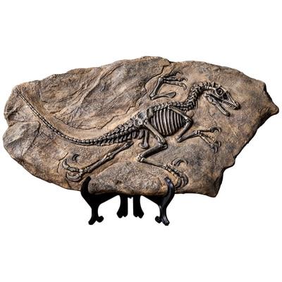 Creative Retro Dinosaur Specimen Fossil Model Decoration Bookcase Study Wine Cabinet Small Crafts Ornaments