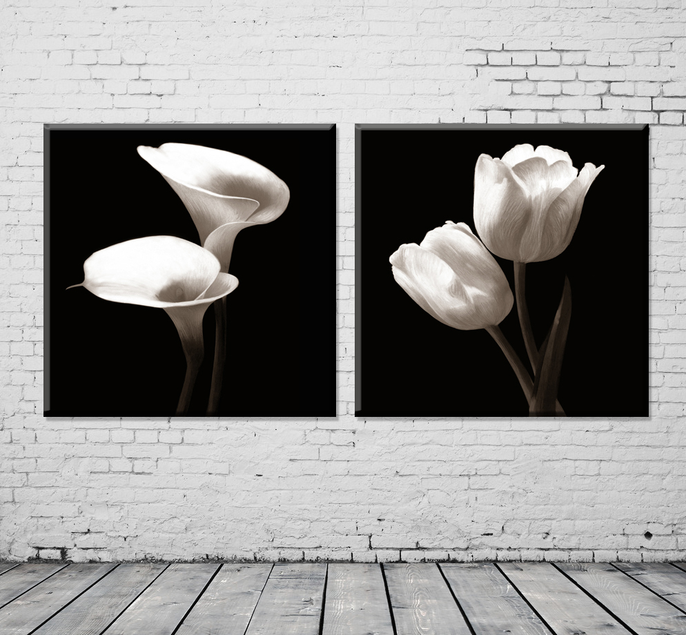Modern Hot Sell 2 Piece Black And White Flowers Pictures Painting