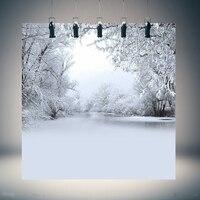 Freya 10x10FT Vinyl Winter Backdrop Ice Snow Tree Photography Background for Photo Studio Props