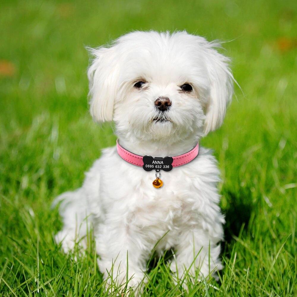 ✅Personalizado collar de perro ajustable acolchada pu cuero ID ...