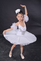 2016 New Arrival Children Ballet Tutu Dress Swan Lake Ballet Costumes Kids Girl Ballet Dress For