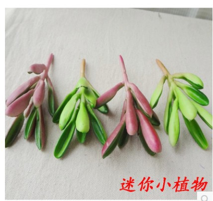 (10 PC / 많은) 도매 플라스틱 시뮬레이션 succulents 다육 질 작은 공장 DIY 단일 인공 꽃 가정 장식