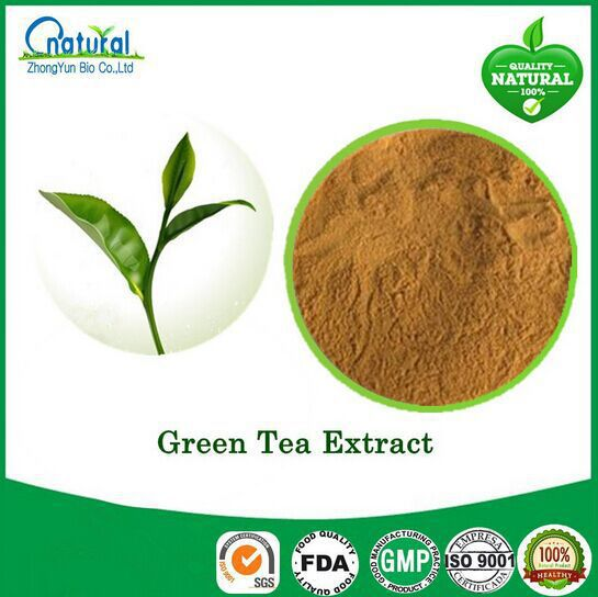 5 Bottle High Quality Green Tea Extract with 80% Polyphenol 450caps free shipping 100g jasmine flower green tea green tea with jasmine buds secret gift free shipping