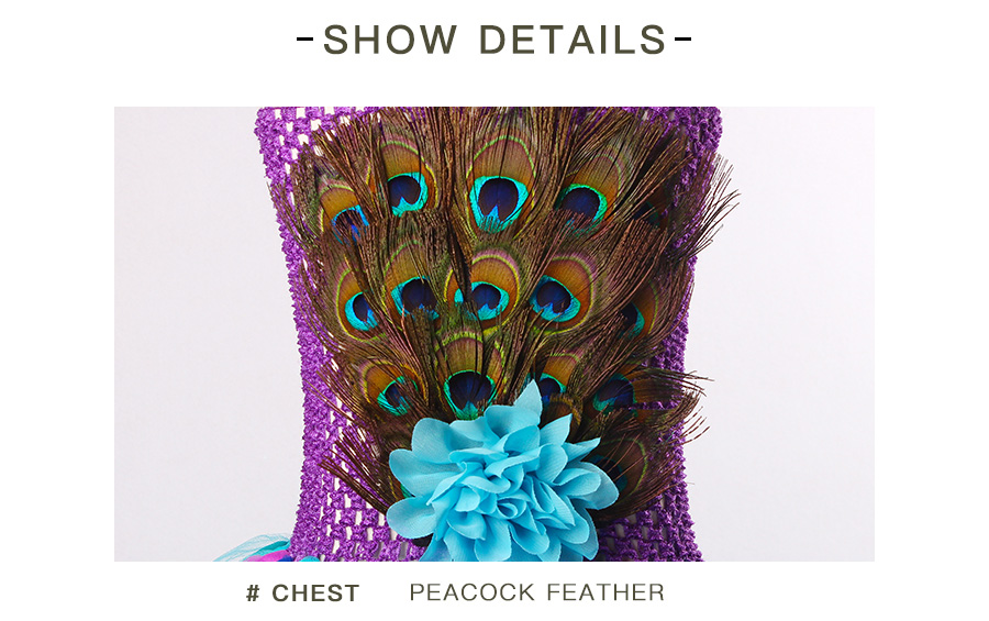 Peacock Feather Girl Tutu Dress Baby Peacock Dress with Hair Accessories  Halloween Pageant Wedding Glam Costume Party Outfit (16)