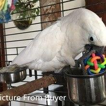 2 шт./лот, красочная игрушка-попугай с колокольчиком, декоративные игрушки для птичьих клеток, Шариковая игрушка для средних и больших попугаев, африканские серые товары для птиц D413