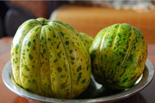 1 original pack 20pcs  Fruit Seeds Baisha Honey Muskmelon Seeds Mature Flowering 70 days free shipping