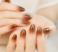 24PCS Nail Art Display Nail Polish Brown Color False French Artificial Nail Tips Salon Tools Nagel
