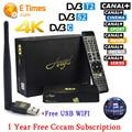 1 Ano a Espanha Cccam Cline Freesat V8 anjo TV Android caixa de DVB-S2 T2/C Receptor de Satélite Digital Europa cccam servidor + 1 PC USB wi-fi