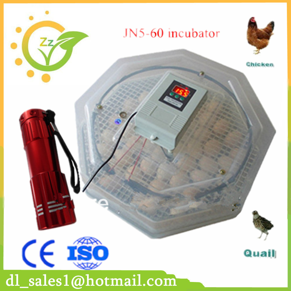 Mini Chicken Bird 60 Eggs Incubator Equipment Advance Hatching Egg Incubator Poultry Hatcher chicken egg incubator hatcher 48 automatic mini parrot egg incubators hatcher hatching machines