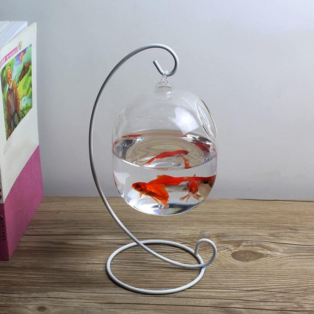 Behokic Clair 12 cm Hauteur Suspendus En Verre Aquarium Fish Bowl Poisson Réservoir Fleur Plante Vase avec 23 cm Hauteur Blanc Rack Aquariums