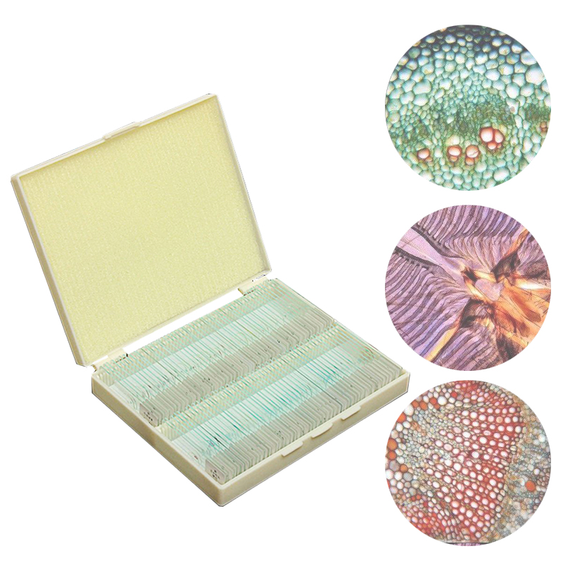 100pcs Biology Prepared Microscope Glass Slides Lab Specimens for Basic Biological Science Education With Plastic Box