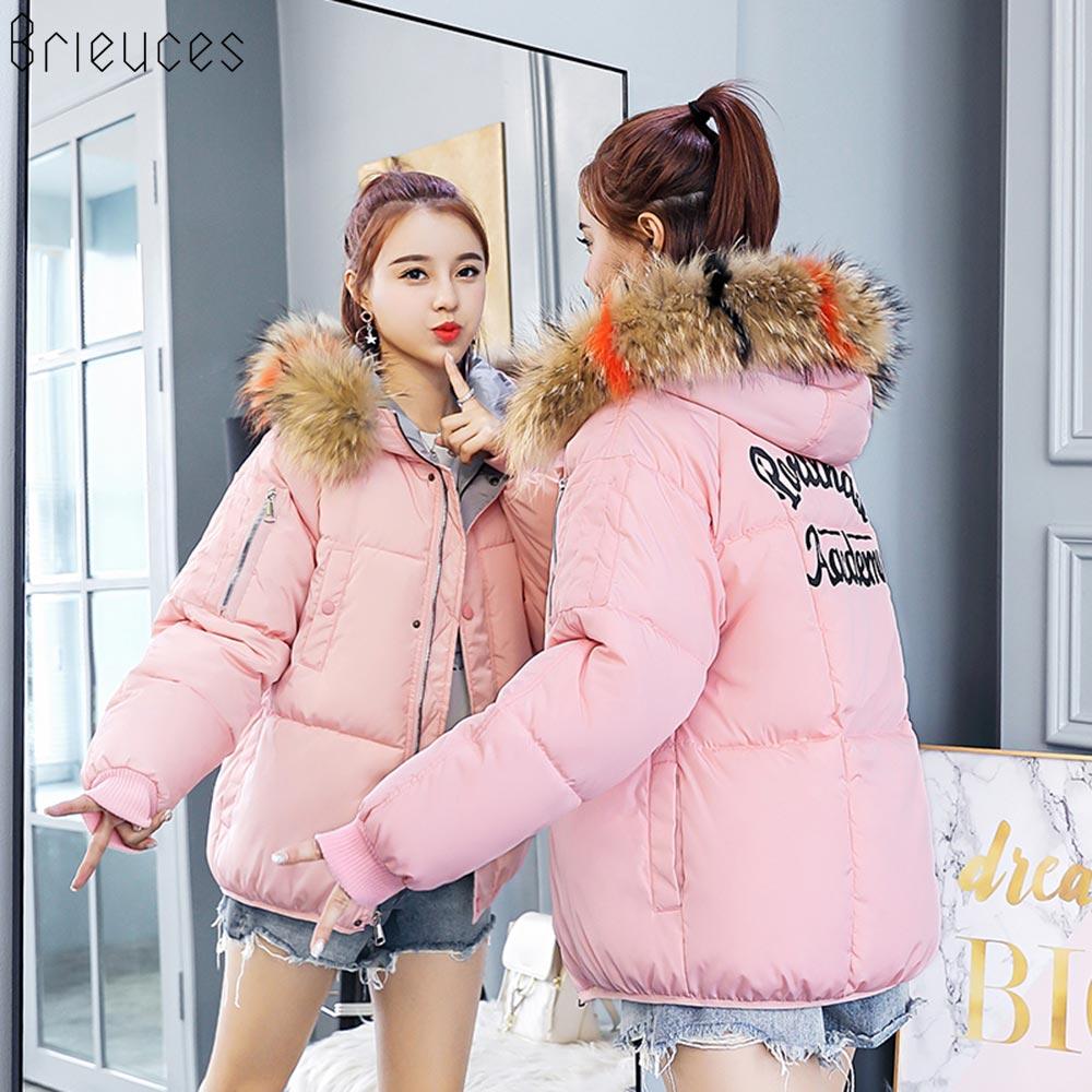 Brieuces 2019 Winter Jacket Women Pattern Back Winter Coat Women Outwear Short Solid Color Large Fur Hooded Jacket for Female