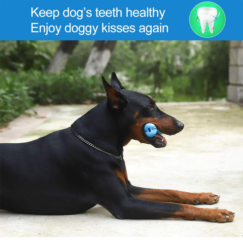 Cepillo dental para perro masticable 5