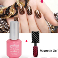 Perfect Summer Nail Gel Polish Cat Eyes Magnetic Gel Polish New Style Hot Sale Nail Art UV Gel Varnish