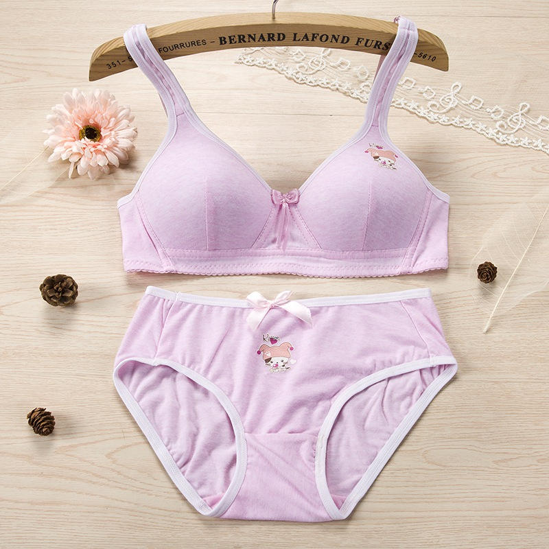 Sexy Wirefree B CupPush Up   Bra     Brief     Set   Seamless Push Up Adjustable 3/4 Cup   Bra   & Comfortable Panties   Sets   New New