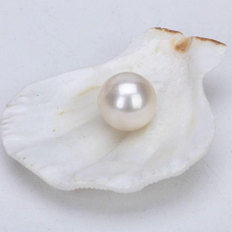 Venta al por mayor 10 Uds (5 pares) 8 8,5 MM medio perforado redondo perla de agua dulce natural