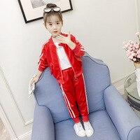 2pcs Tops + Pants Pleuche Baby Girls Tracksuit Set Children Girl Velvet Long Sleeve Zipper Coat Kids New Year Costume Clothing
