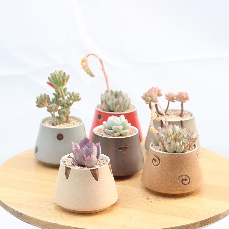 Set of 6 Japanese Transmutation Glazed Ceramic Flowerpots Succulent Plant Pots Pack of 6 Colors Decorative Planters