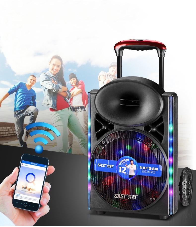 2017 nouveau son extérieur portatif de Bluetooth de tige de traction de 12 pouces