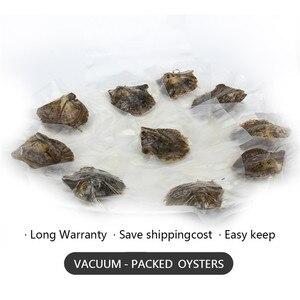 Image 2 - CLUCI 30pcs 8 8.5 มม.Akoya ไข่มุกหอยนางรมรอบบรรจุเดี่ยว Akoya Pearl ลูกปัดคุณภาพ Akoya pearl Oyster WP348SB