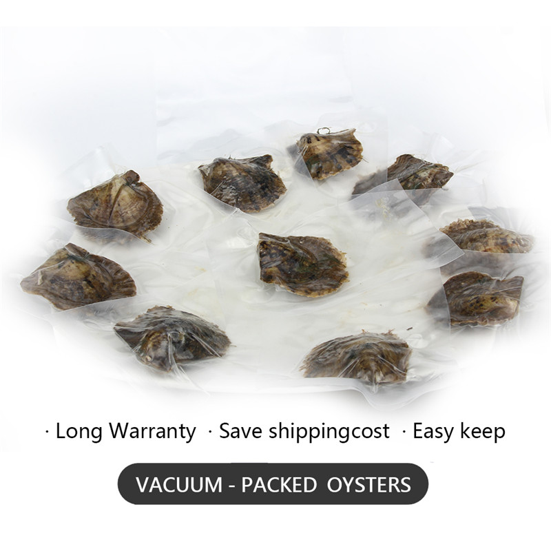 CLUCI 30pcs 8-8.5mm Akoya Pearls in Oysters Round Single Packaged Genuine Akoya Pearl Beads  Quality Akoya Pearl Oyster