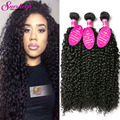 Brazilian Kinky Curly Virgin Hair 3 Bundles 8A Brazilian Virgin Hair Curly Weave Human Hair Brazilian Hair Weave Bundles Curly