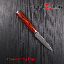 GRANDSHARP Damascus Steel Knife 3 5 Inch Paring knife 67 layers Japanese Damascus Steel VG 10