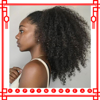 Afro Kinky Curly Wig 13x4 Short Full Lace Front Human Hair Wigs For Women Black 130% Pre Plucked Gluless Full Lace Wig Remy