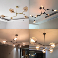 Lamp Globe Glass Chandelier Lamp Branching Bubble Modern Chandelier Light For Kitchen Cafe Store Lighting Cloth