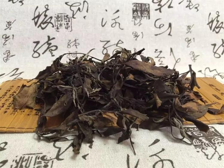 fuding white tea (6)