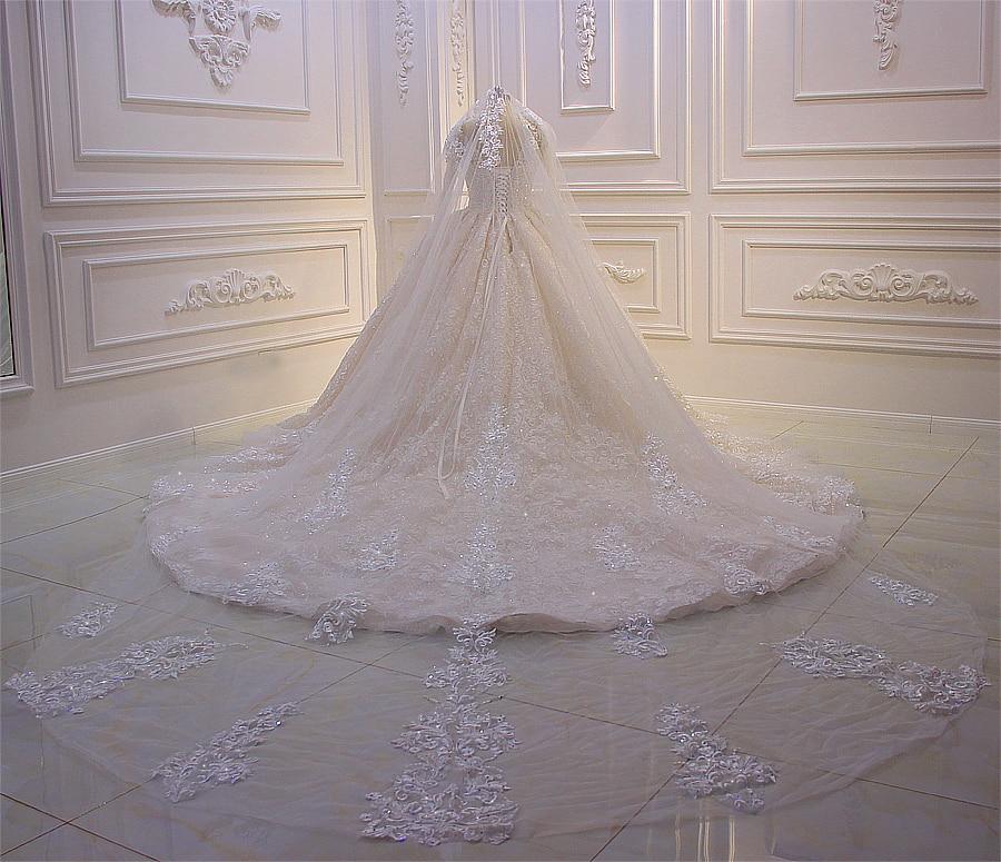 Amanda Design Luxury Lace Appliqued shiny long lace Veil