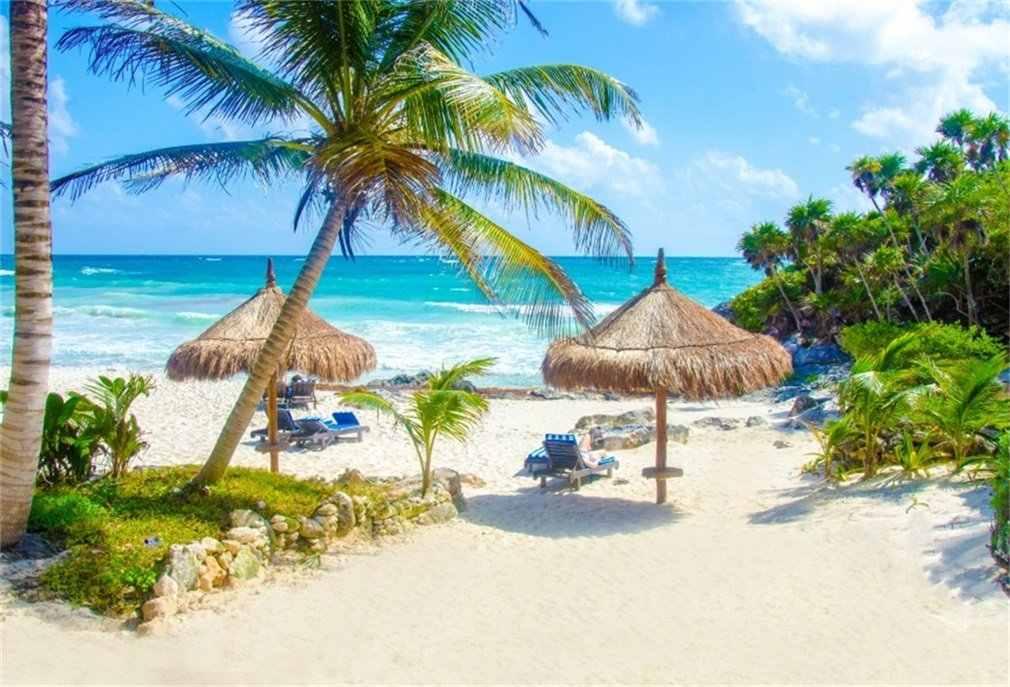 Фон для фотосъемки пляж Приморский Кокосовый деревянный стул голубое небо белое облако Лето Путешествия Фото фон