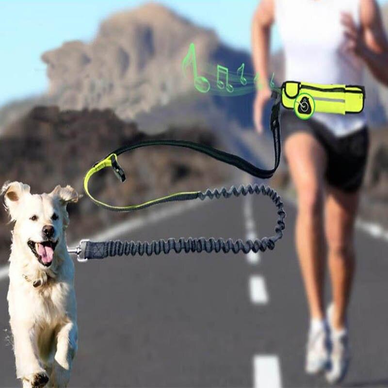 Ganyue manos libres elástico perro correa ajustable acolchado cintura reflectante correr caminar mascota correa de plomo con bolsas
