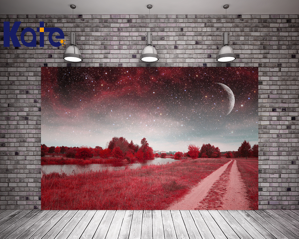 Kate Scenic Photo Shoot Backdrop Sunset Starry Sky Backdrop Wedding With Moon Washable Seamless Background For Photo Studio