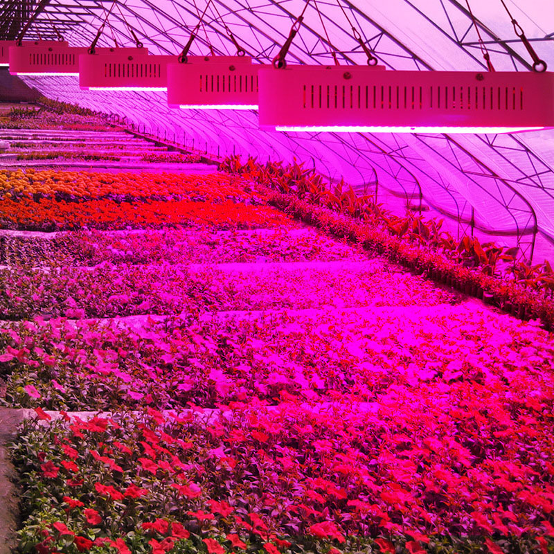 Full Spectrum Led Grow Light 400W Grow Lights Indoor Plant Lamp Growing Led for Plants Flower Greenhouse Grow Box/Tent Bloom T2 max 4 cob 400w led grow light full spectrum led plant growing lamp indoor greenhouse hydroponic systems