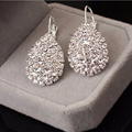 Water Drop Set Rhinestone Clip Earrings fashion long earrings for women high-quality charms Jewelry Wedding Jewelry SWXFR162
