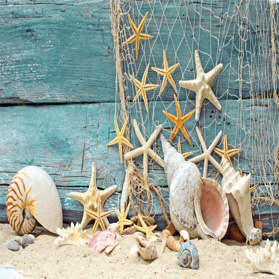 Laeacco Starfish Shell Beach Wooden Boards Baby Photography Backgrounds Vinyl Custom Camera Photo Backdrops For Photo Studio