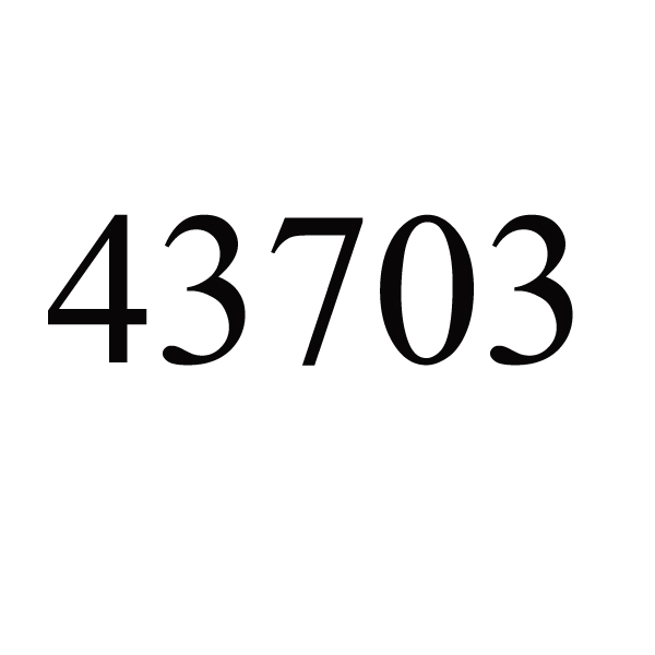 43703 # сумка