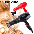 Hair Dryer 1600W Household Hairdryer Beauty Health Hair Care Styling Tools Black Fashion Hot&cold Wind with Blower Cover YLL1247