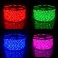 100 M 220 V 240 V LED RGB tira de luz 5050 60 led/m cinta impermeable para jardín al aire libre decoración del edificio del Hotel del Parque del puente