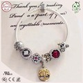 Hot Sale Good Quality Silver Charms Jewelry Gold 925 Sterling Silver Charm Bracelet For Girls