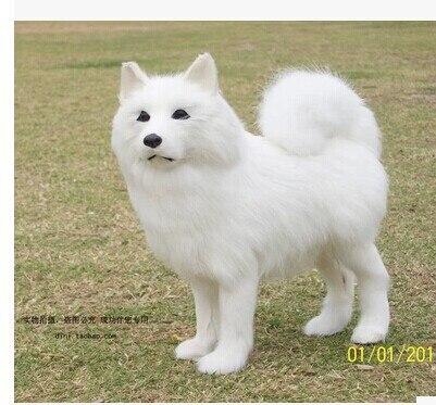simulation animal about 23X21X7CM Samoyed dog plush toy polyethylene & furs prop doll birthday gift w5369 стоимость