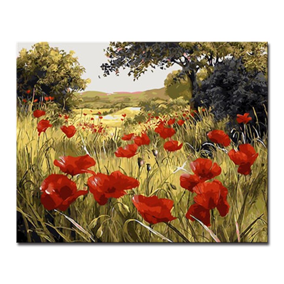 Red Poppy Flower Field Pictures Frame Handpaint Diy Digital Painting