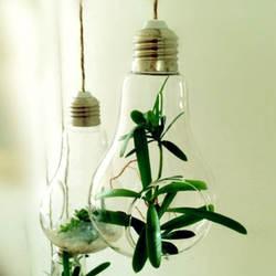 Speci Стекло лампа ваза вод висит ваза Стекло гидропоники контейнер горшок Свадебный декор для Офис