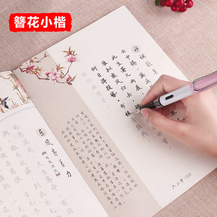 3D Reusable Groove Xiao Kai Calligraphy Copybook Erasable Pen Learn Chinese Characters Adults Children Chinese Writing Books
